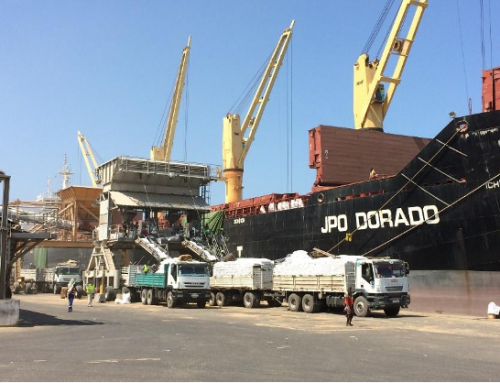 Dry bulk terminal scan and strategy